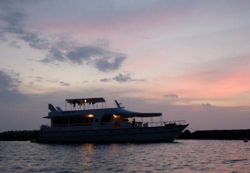 OMツアー30thアニバーサリー特別ボートトリップを公開!